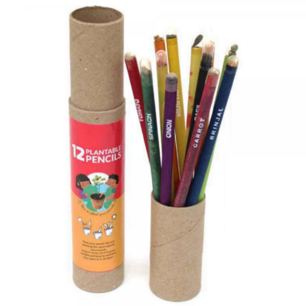 Plantable Classic Seed Pencils – 12 pcs Plantable Pencils Save the planet Ecofriendly Stationery