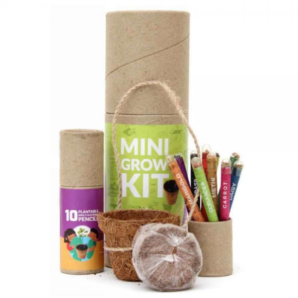 Mini Grow Kit – 10 Mini Seed Coloring Pencils + 1 Coconut Husk Mini Planter + 1 Cocopeat Disk